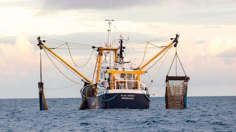 Bruselas y Londres logran el primer acuerdo de reparto de cuotas pesqueras tras el Brexit