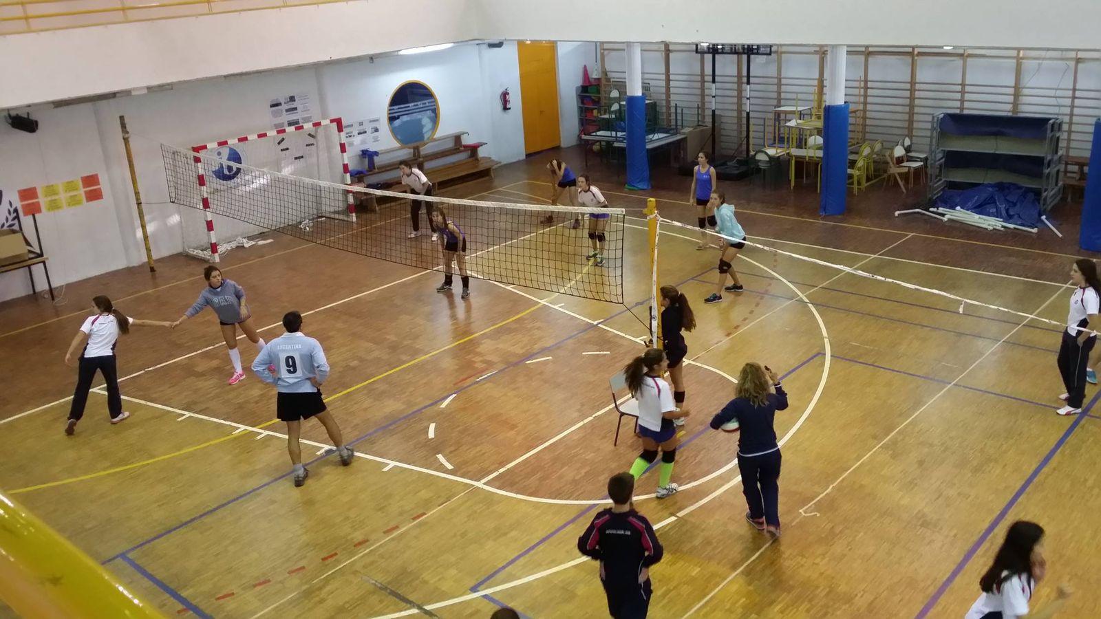 Foto: Algunas cadenas han decidido evaluar solo a uno de sus colegios, como ocurre con SEK Ciudalcampo.
