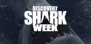 Post de Discovery estrenará 19 documentales inéditos en su 'Shark Week'