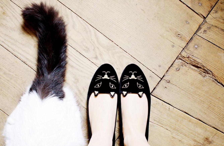 Foto: Bailarinas: el truco definitivo para prevenir las ampollas con ese calzado-tortura