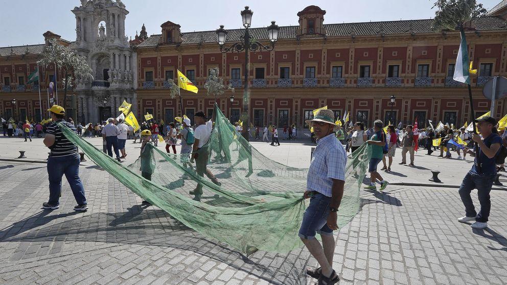 Andalucía detecta destrucción de empleo en los pueblos más dependientes del SMI