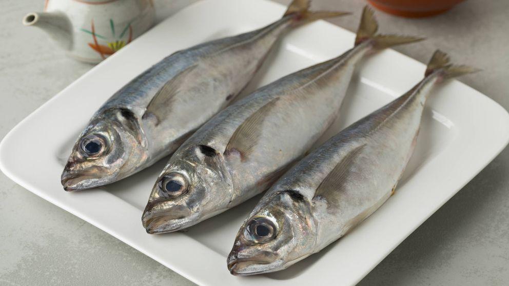 El jurel, un pescado antes considerado 'de pobres' con gran riqueza nutricional