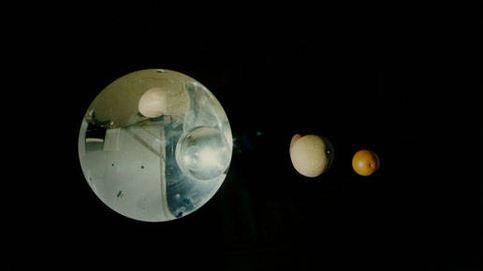 'Lua Cão': un viaje hipnótico a través del tiempo y el espacio
