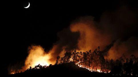 Asturias, en situación de emergencia por la proliferación de incendios