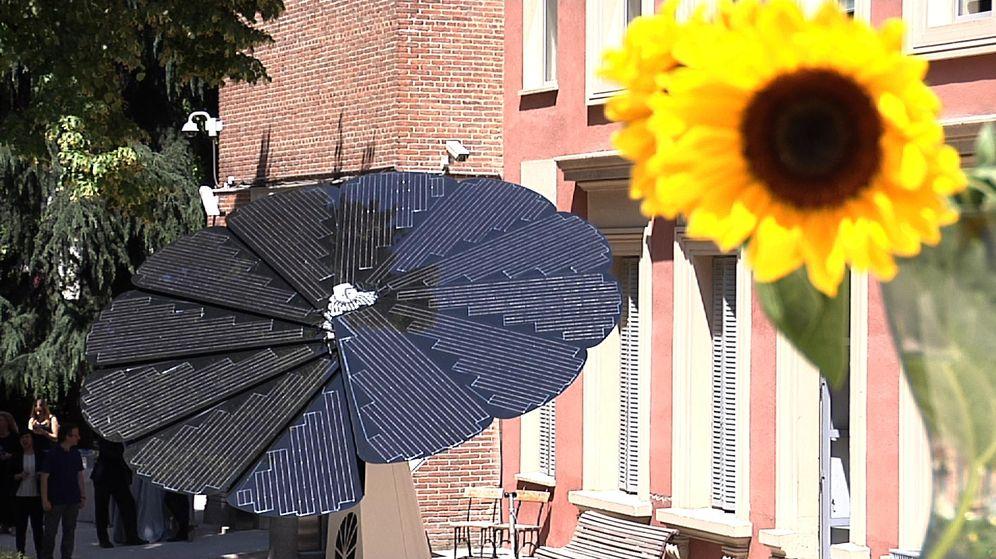 Foto: El panel solar con forma de girasol abre la puerta al autoconsumo en España