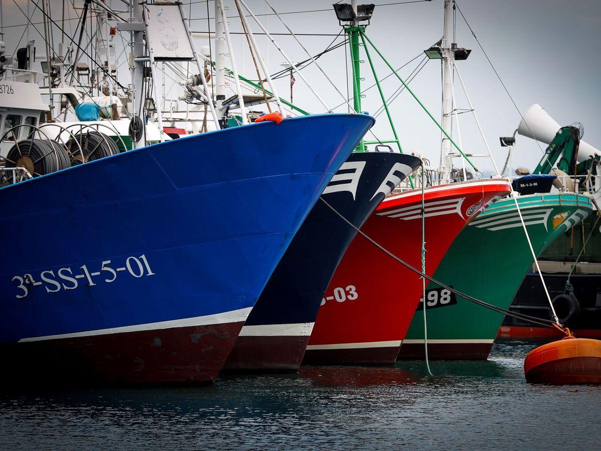 Foto: Barcos anclados en el puerto de Hondarribia. (Efe)