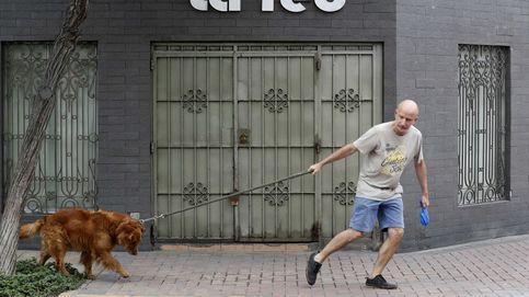 Cómo acostumbrar a los perros a que tienes que volver a trabajar