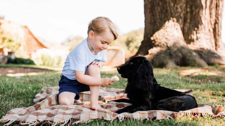 George, en su tercer cumpleaños con Lupo. (Palacio de Kensington)