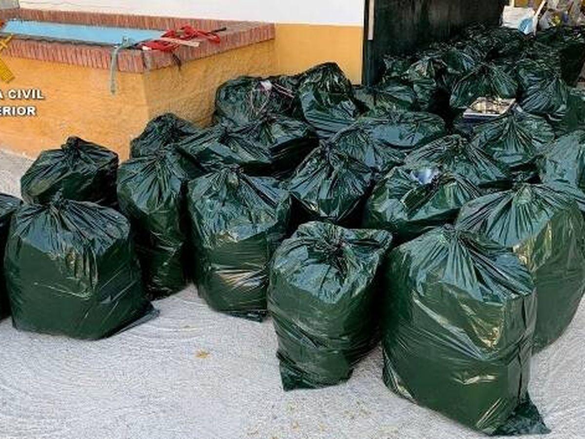 Foto: Parte de la droga incautada en la operación Zurek. (Guardia Civil)