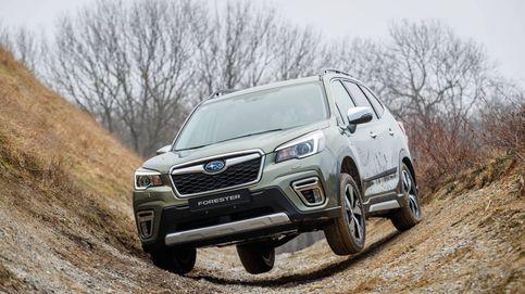 Por qué el nuevo Subaru Forester es el coche más campero (y eficiente) de todos