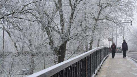 Intensas nevadas en Suiza y temperaturas bajo cero en Palencia: el día en fotos
