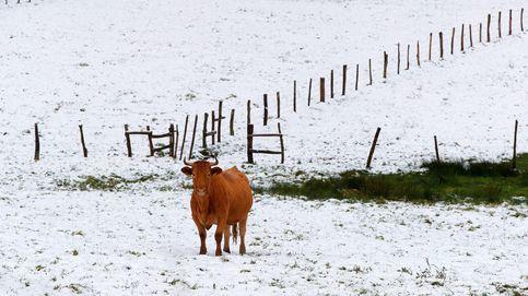 Rescatan a un hombre de 75 años perdido 12 horas en Galicia a 8 grados bajo cero