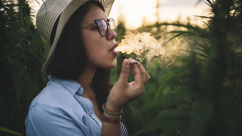 Día Mundial de la Marihuana: cuánto duran sus efectos realmente, según la ciencia