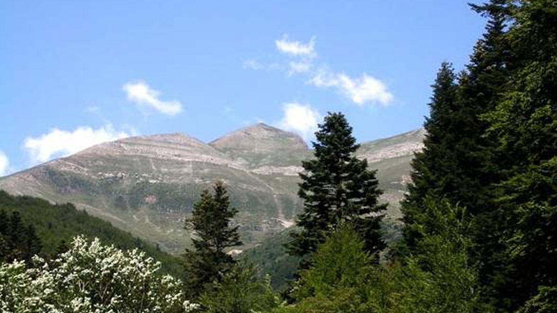 Monte Ori. (Ayuntamiento de Ochagavía)
