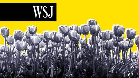 Desde la fiebre de los tulipanes hasta las 'NFTs'… las burbujas siempre han existido