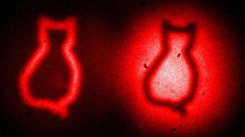 Idean un sistema para medir cómo de vivo (y muerto) está el gato de Schrödinger