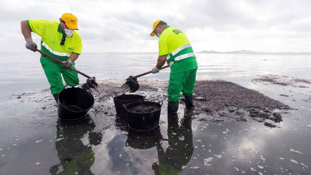 Foto: Limpieza del Mar Menor en Los Urrutias. (EFE)