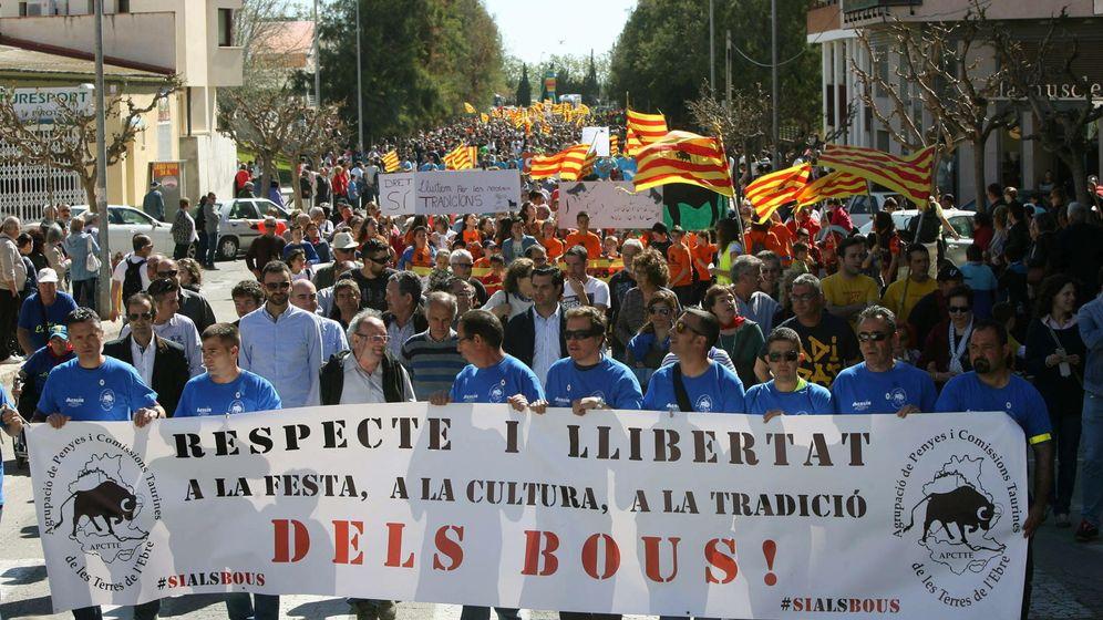 Foto: Miles personas reivindican en Amposta (Tarragona) que pervivan las tradiciones taurinas. (EFE)