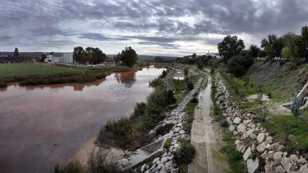 El presidente del Guadalquivir reta al Gobierno: 433.000 € más a dedo