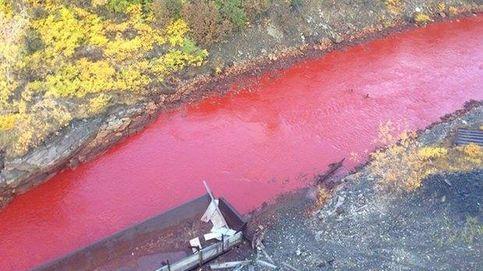 Resuelto el misterio de por qué un río ruso se tiñó de color rojo de un día para otro