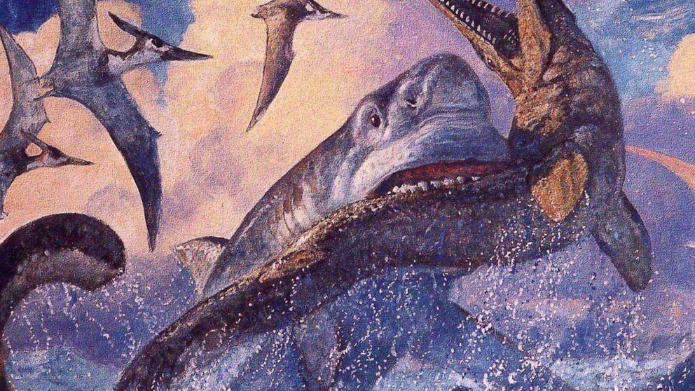 Hallan en Canarias fósiles del mayor depredador marino