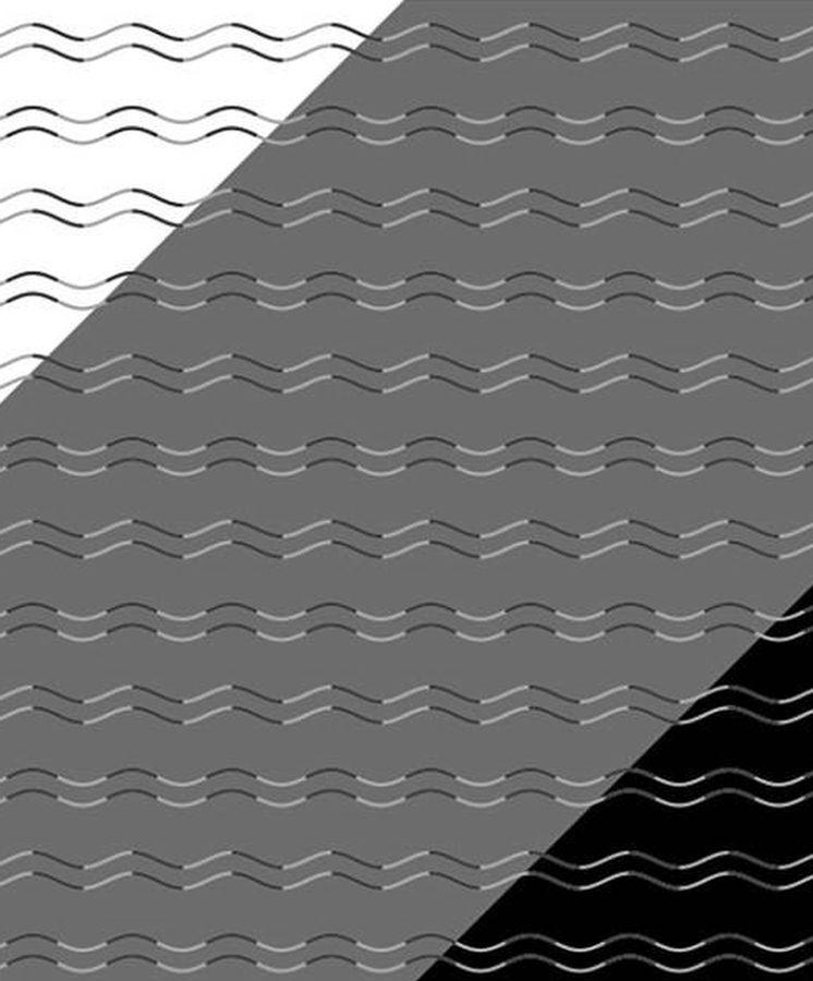 Foto: La ilusión ha sido creada por un psicólogo japonés. (i-Perception)