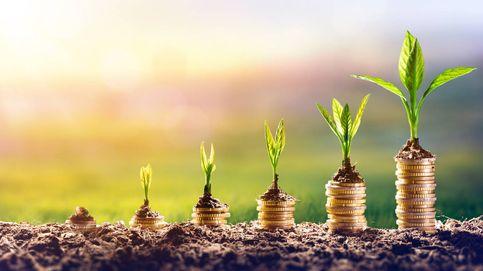 El mejor plan de pensiones del año (y de la década) alcanza el 'top 10' en ventas en 2020