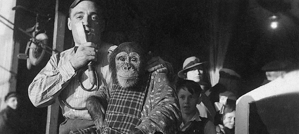 Foto: El mono cabaretero de Fritz Petter que hacía el saludo fascista (Fritz Petter)