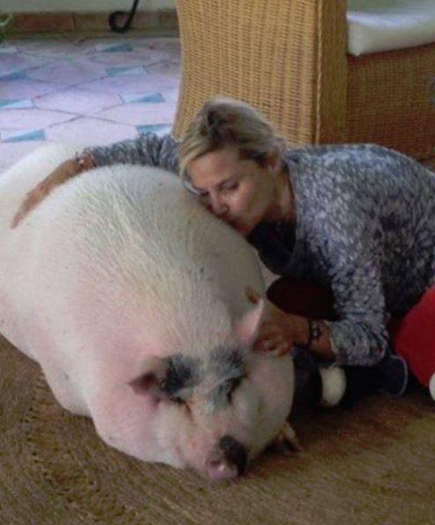 Foto: Eugenia con su cerdo Bacon (Instagram)