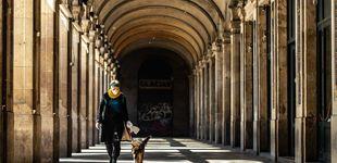 Post de Denunciado por alquilar perros para pasear en A Coruña por el confinamiento