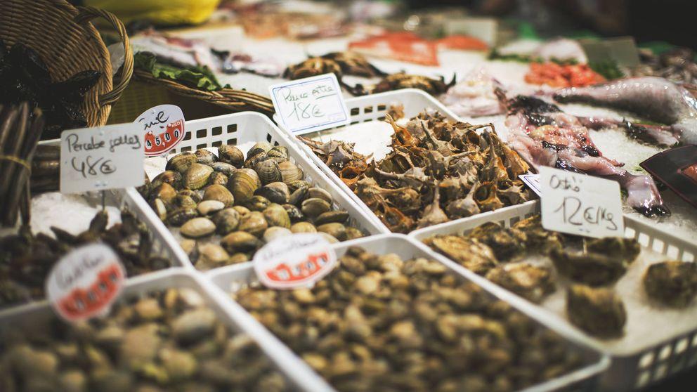 El peligro de tomar los moluscos que se suelen coger del mar