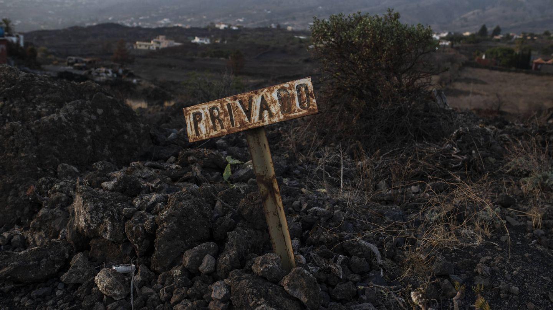 Una señal quemada por el incendio que asoló los municipios de El Paso y Los Llanos. (Alejandro Martínez Vélez)