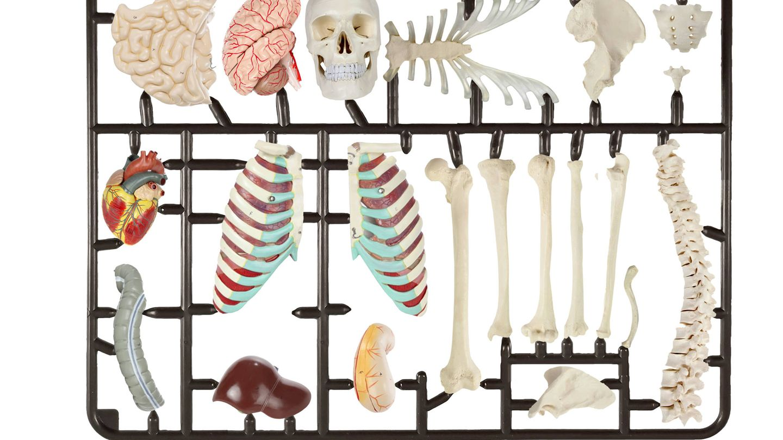 El mercado de los implantes, visto por Raúl Arias.