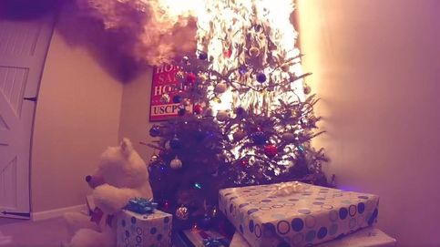 La razón por la que debes tener cuidado con el árbol de Navidad