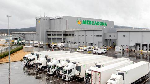 Mercadona termina su bloque logístico en Euskadi por 187 millones y con 480 empleos