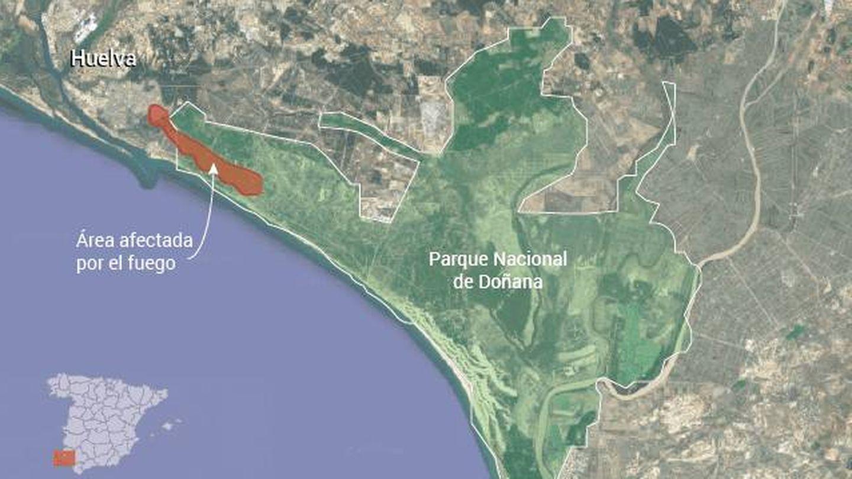 Área afectada por el fuego en Doñana
