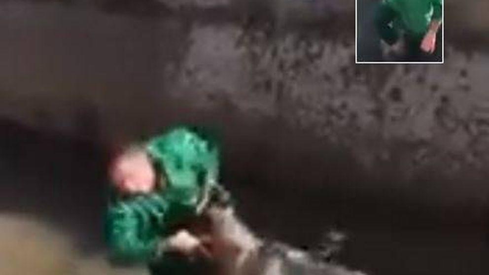El brutal vídeo de maltrato a un jabalí: los animalistas identifican al autor