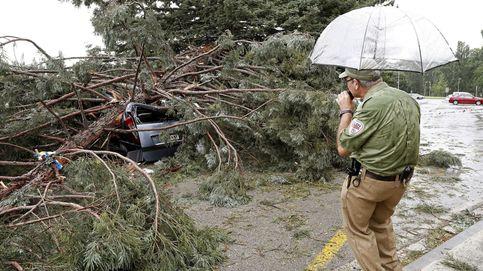 Dos heridos graves al caer un árbol en la Universidad de Navarra por el viento