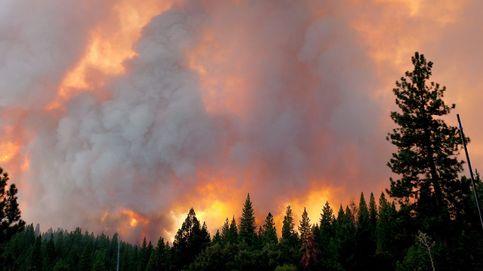 Más de 400 personas, evacuadas de sus casas por los incendios en California