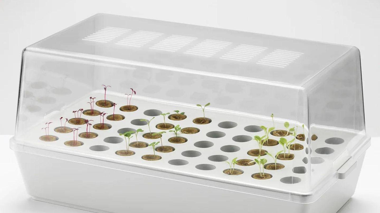 Con este semillero de Ikea podrás ver crecer tus plantas desde cero. (Cortesía)