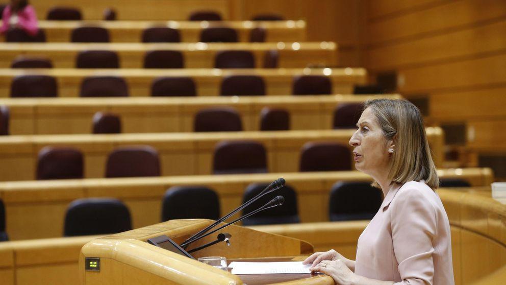 Último aviso para el AVE a Valencia: Alsa es la única esperanza de Fomento