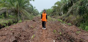 Post de Un pueblo contra los incendios provocados por el aceite de palma