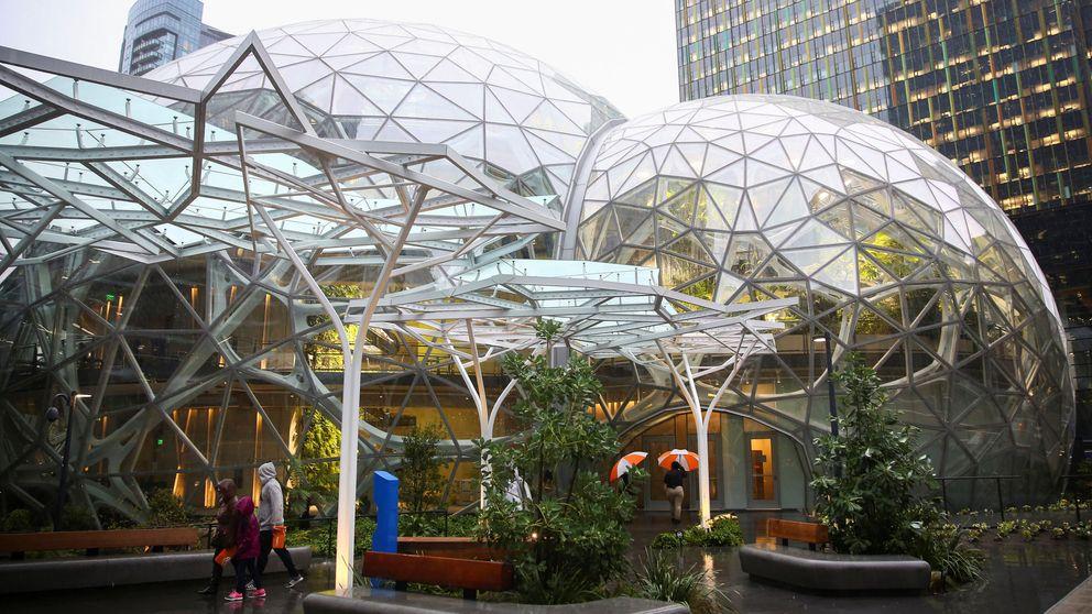 Las nuevas oficinas de Amazon son un oasis vegetal