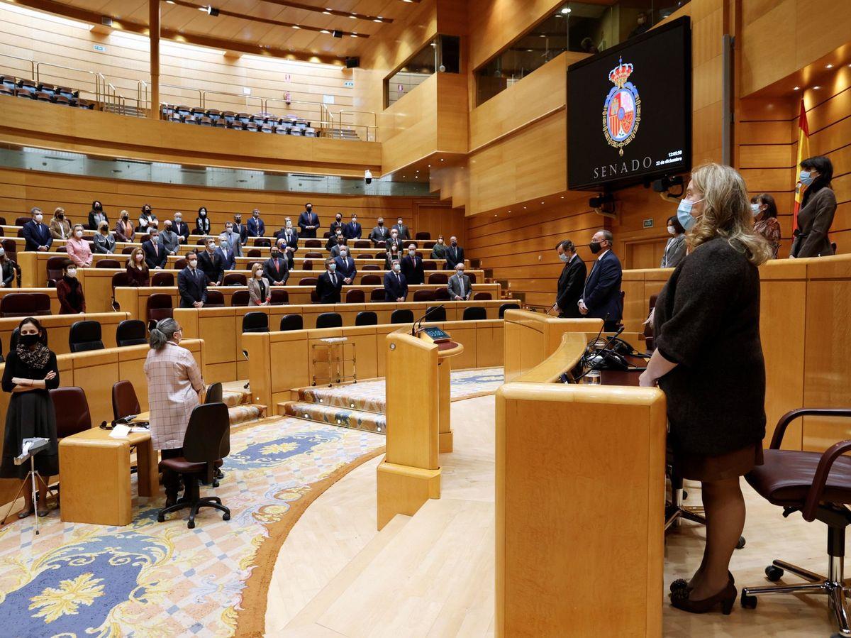 Foto: Minuto de silencio al inicio del pleno celebrado este martes en el Senado. (EFE)
