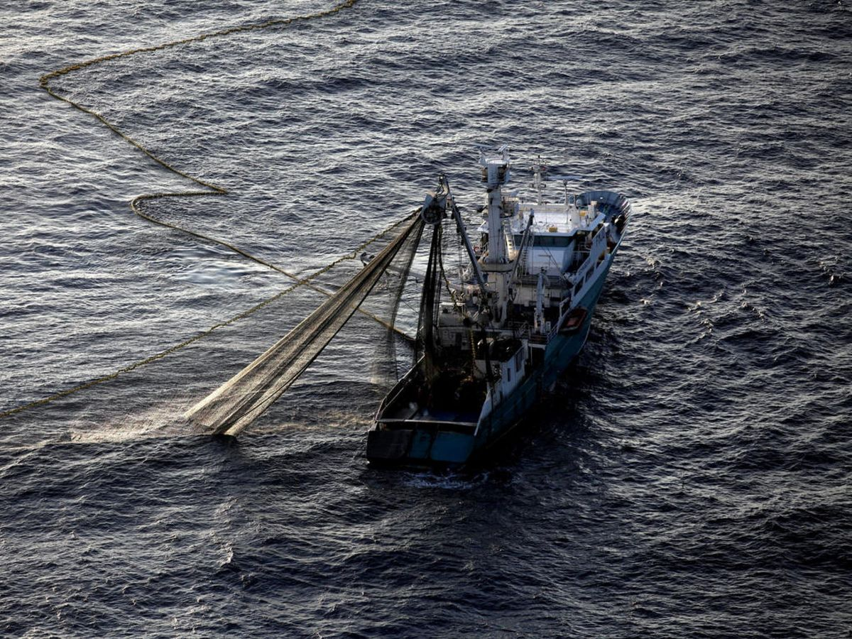 Foto: Un pesquero francés con las redes llenas de peces y, sin saberlo, de plástico. Greenpeace