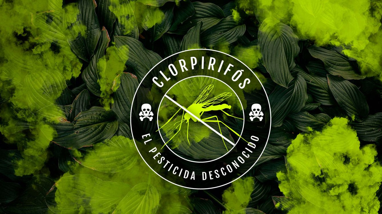 Clorpirifós: uno de los pesticidas más peligrosos lo tienes en tu plato y en tu cuerpo
