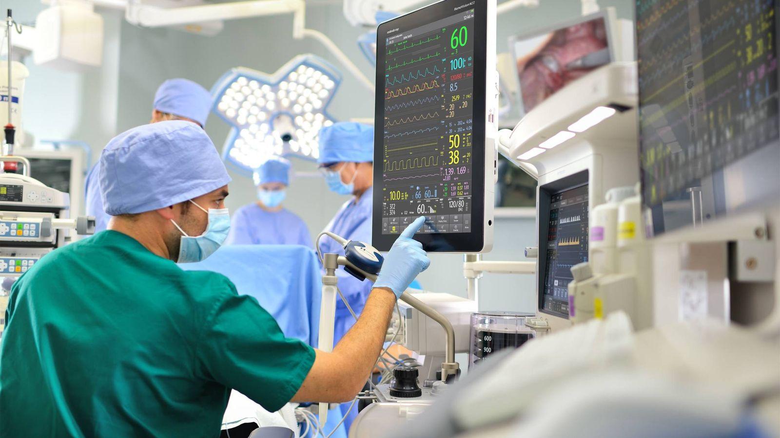 El hongo de la micobiota que provoca infecciones en los hospitales españoles