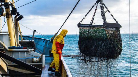 El futuro de la pesca en España: más sostenible y basada en la ciencia