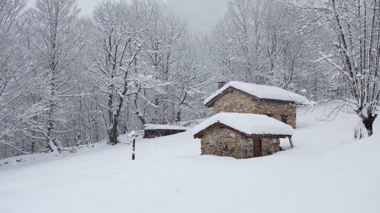 La cabaña donde estuvo Días aislado 100 días.