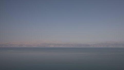 Un íbece en el mar Muerto
